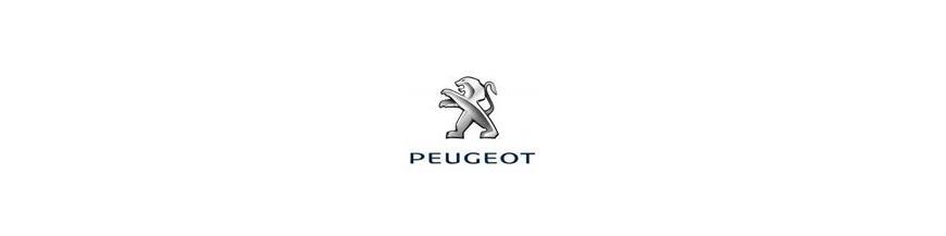 Apoyabrazos Coche a medida Peugeot