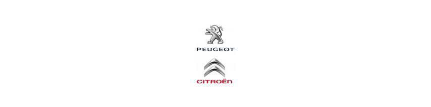 Conectores Traseros ISO Citroen-Peugeot