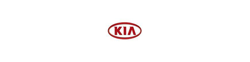 Conectores Traseros ISO para Kia